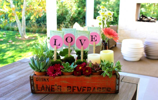 soda_finished2